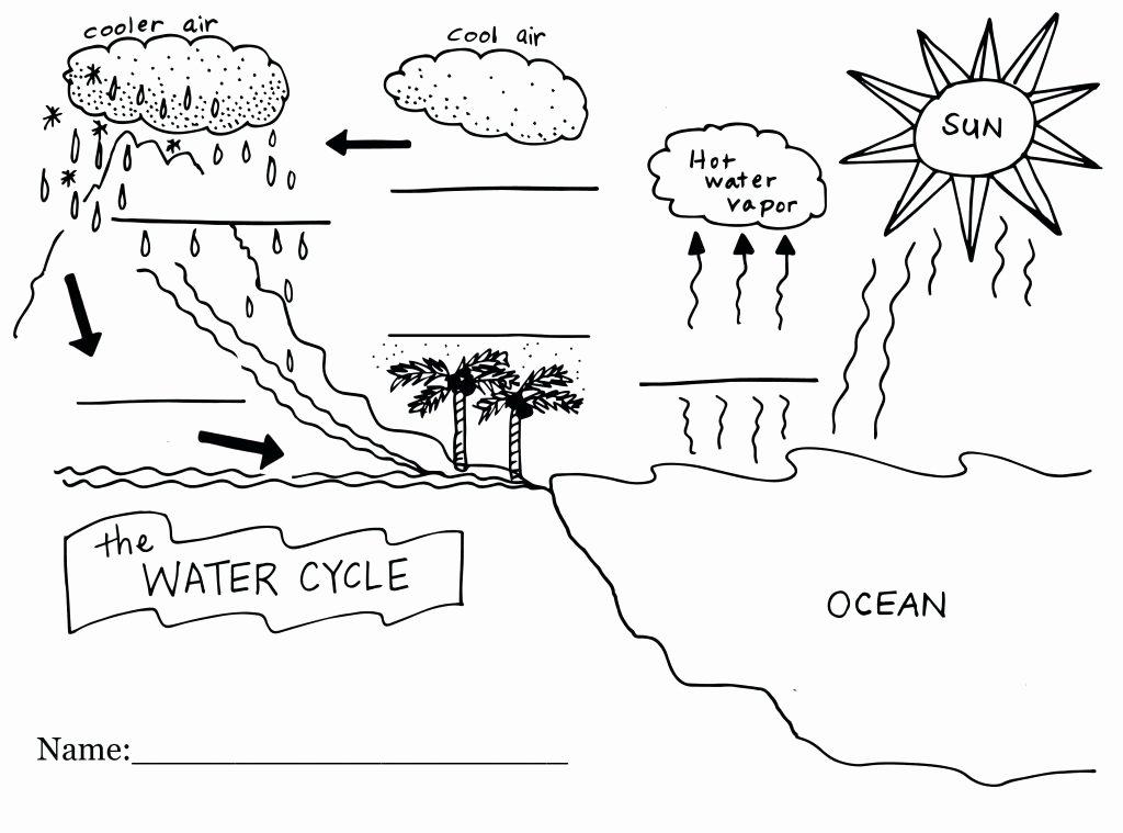 Water Cycle Worksheet Kindergarten Label the Water Cycle Worksheet Unique Condensation