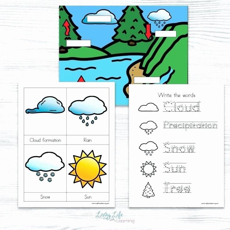 Water Cycle Worksheet Kindergarten Water Worksheets – Petpage