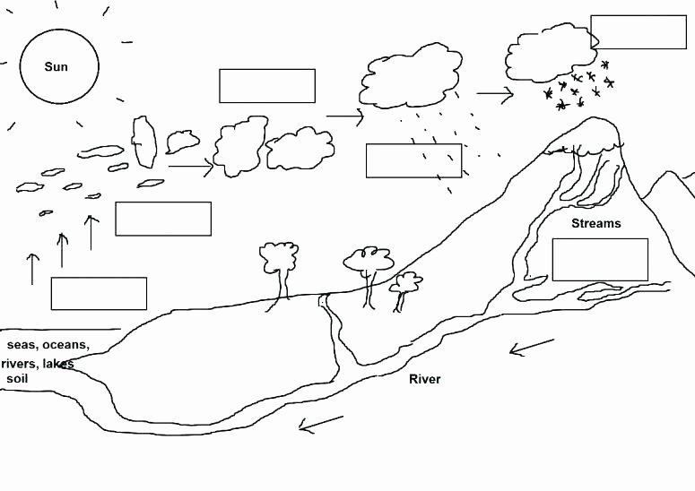 Water Cycle Worksheets 2nd Grade soil Worksheets for 4th Grade
