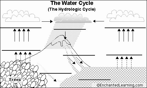 Water Cycle Worksheets 2nd Grade Water Cycle Diagram for Kids to Label Inspirational Water
