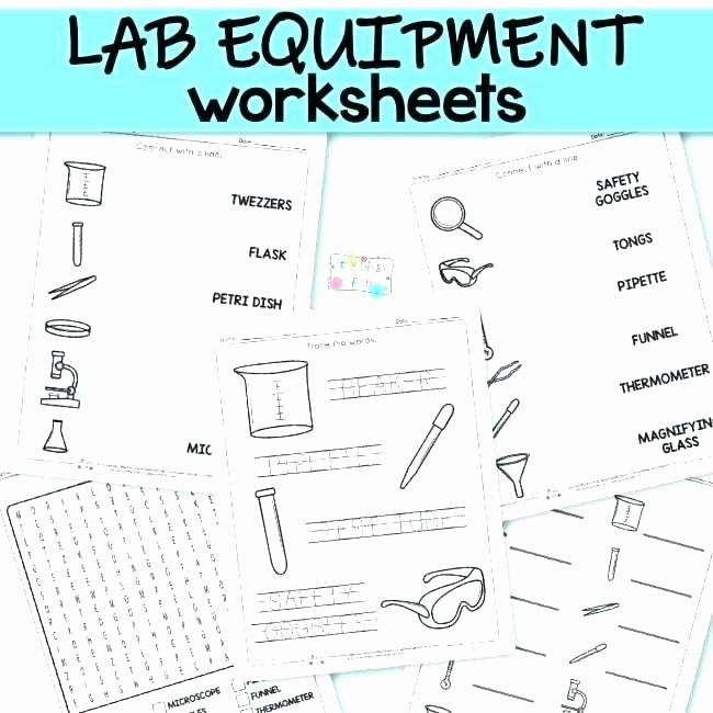 Weather tools Worksheet Awesome Science Worksheets