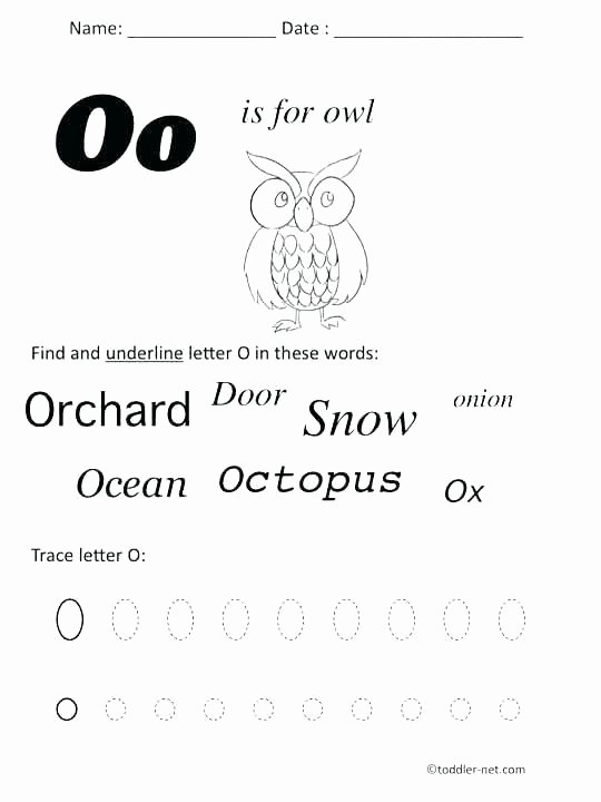 Weather Worksheets for First Graders Collection Kindergarten Science Weather Esl Weather