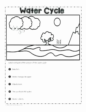 Weather Worksheets for Second Grade Characteristics Living Things Worksheet 2 Grade Science