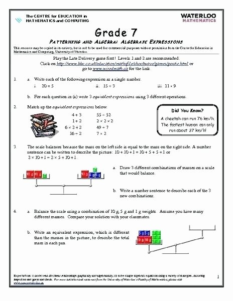 Writing Numerical Expressions Worksheets Algebraic Expressions for 6th Grade Worksheets